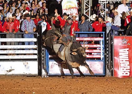 Brahma-lança-campeonato-de-montaria-em-touros-423x302